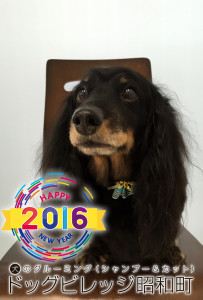 20160121varon.jpeg